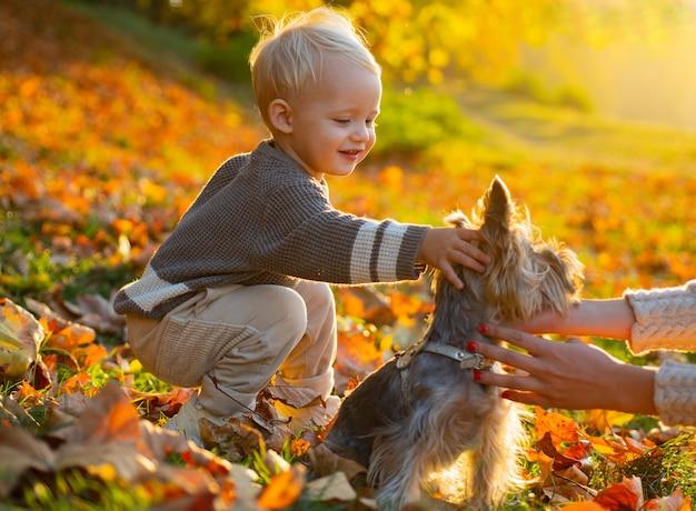 Garoto garoto senta-se nas folhas de outono no parque com filhote de cachorro bonito pequeno.