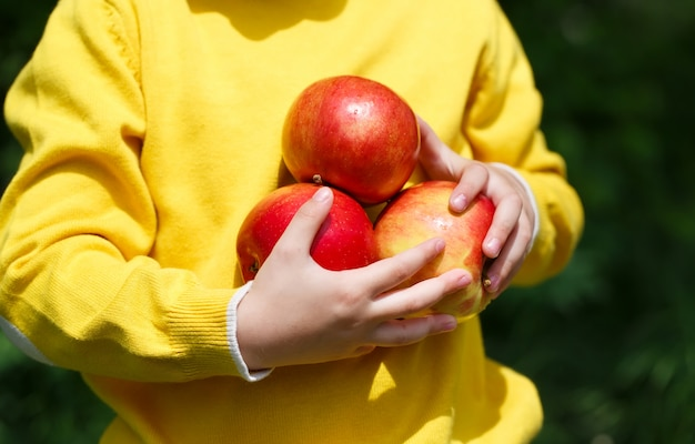 Garoto segurando maçãs