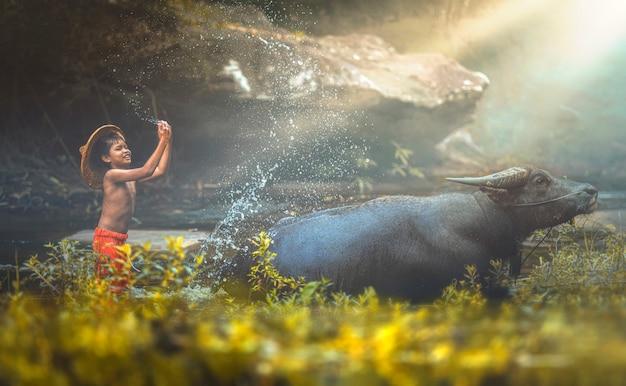 Garoto urbano durante o banho de água ou tomar um banho de búfalo