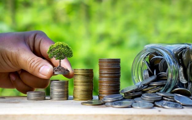 Garrafa coletando dinheiro e plantio de árvores em pilhas de moedas