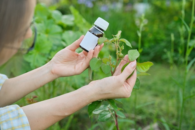 Garrafa com inseticida químico nos jardineiros mão close-up