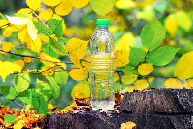 Garrafa de água potável na floresta de outono em um toco