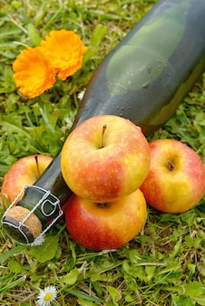 Garrafa de cidra com maçãs da normandia