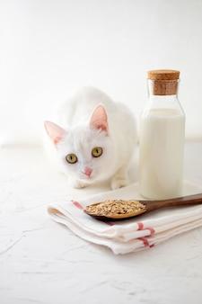 Garrafa de leite de grão vegano. leite de aveia.