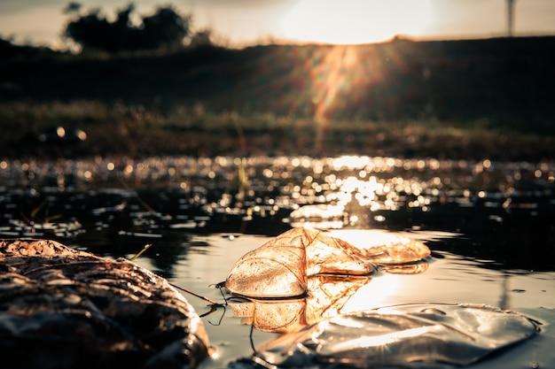 Garrafa de plástico no rio com bokeh e reflexo de lente, salvar o conceito de meio ambiente. foco seletivo e suave.