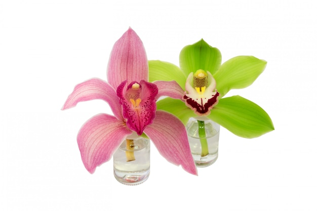 Garrafa de vidro de orquídea isolada