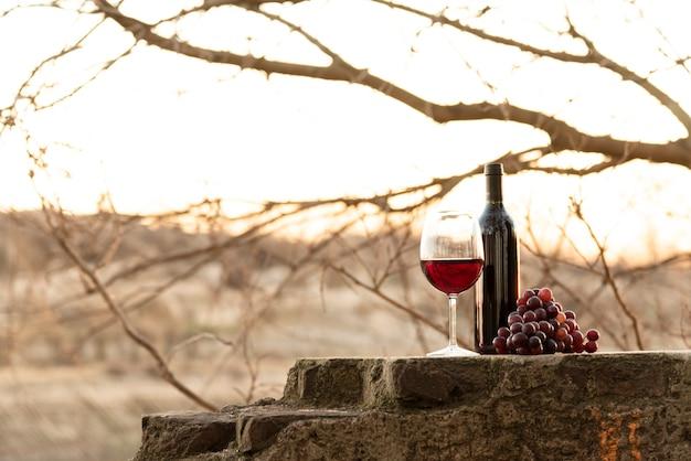 Garrafa de vinho cheia de tiro e vidro com uvas