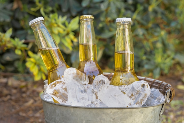 Garrafas de bebidas de alto ângulo em cubos de gelo