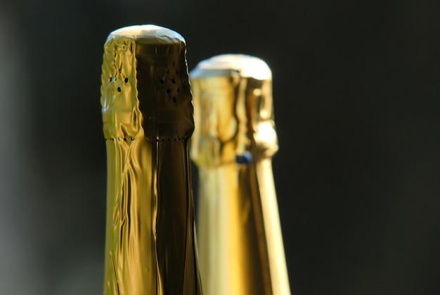 Garrafas de vinho espumante no jardim ao ar livre