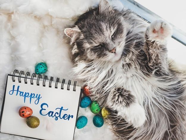 Gatinho encantador e ovos de páscoa pintados em cores brilhantes sobre um fundo branco
