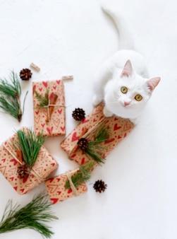 Gatinho fofo curioso e brincalhão em torno de presentes e ornamentos embrulhados