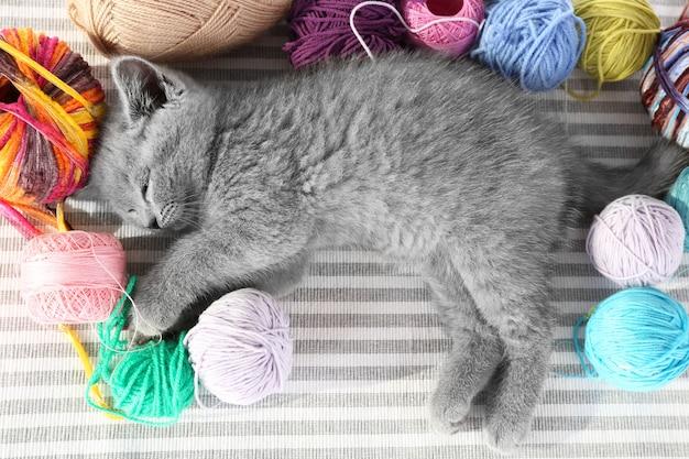 Gatinho fofo e cinza com bolas coloridas de linha no tapete listrado, close-up