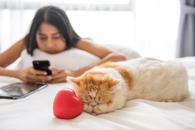 Gato amarelo na cama perto do coração.