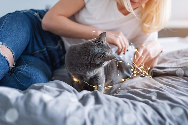 Gato azul russo com luzes de natal, foco seletivo