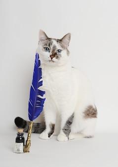 Gato branco com caneta de pena azul e tinta
