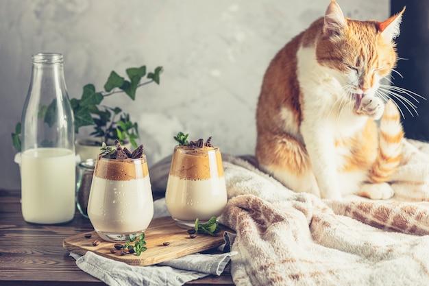 Gato branco vermelho bonito relaxado perto de dois copos de café dalgona gelado na superfície de madeira escura