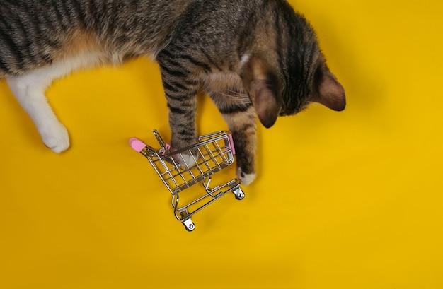 Gato brincalhão é jogado com um mini carrinho de compras em um fundo amarelo. vista do topo