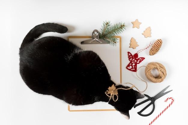 Gato com prancheta na mesa branca