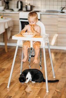 Gato comendo macarrão do chão atirado por menino