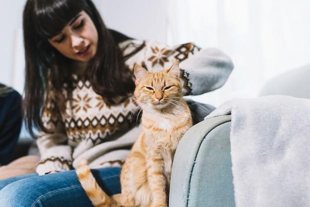 Gato de gengibre acariciando a mulher