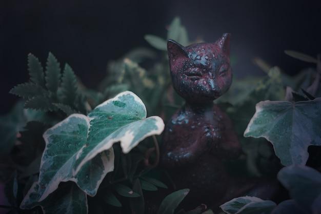 Gato do zen na meditação em plantas de jardim frescas. pose de ioga