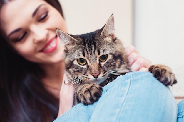 Gato doméstico não está feliz com abraços com a proprietária