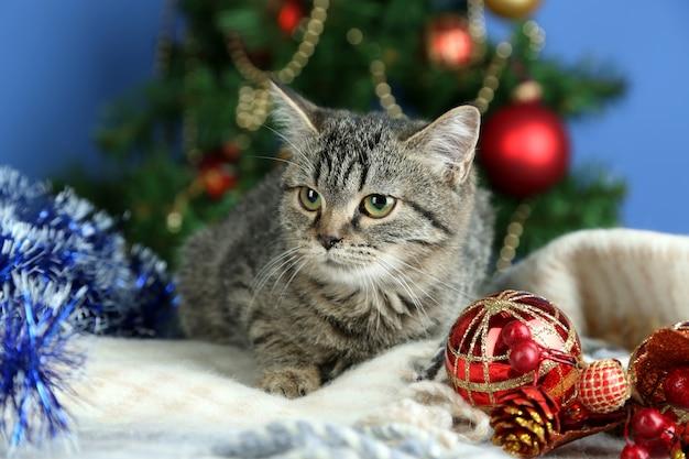 Gato em enfeites de comemoração no fundo da árvore de natal