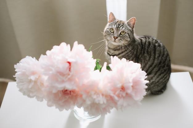Gato engraçado e jarro com flores em uma mesa na sala de luz
