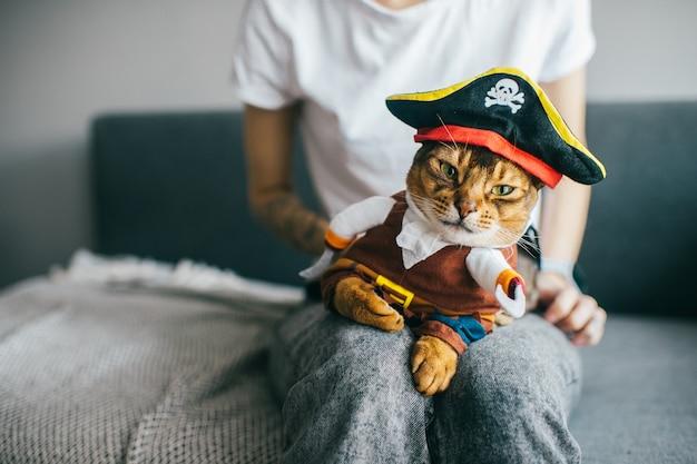Gato engraçado na máscara.