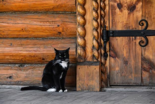 Gato na entrada da casa de campo