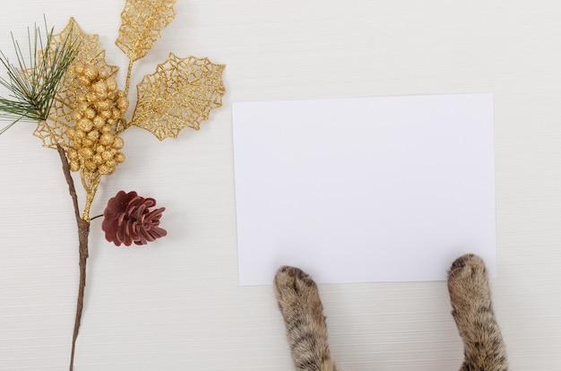 Gato segurando um cartão de felicitações em branco para o natal com decoração, vista superior