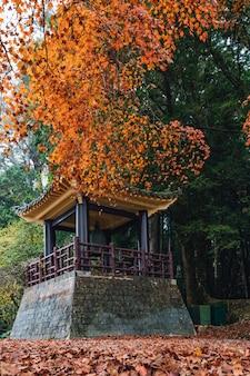 Gazebo chinês com árvores e árvores de maple