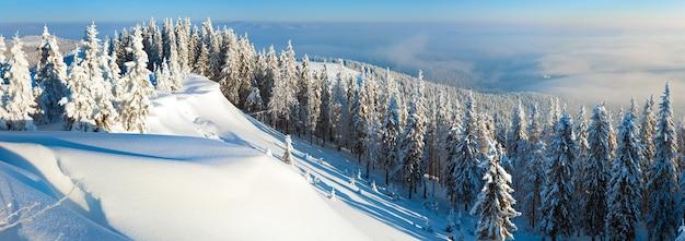 Geada de inverno e topo de colina coberto de neve com pinheiros e nevascas (montanhas dos cárpatos, ucrânia). três tiros costuram a imagem.