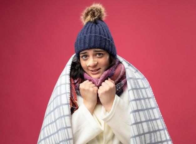 Gelado de frio, jovem caucasiana doente, vestindo um manto de inverno, chapéu e lenço envolto em xadrez, mantendo os punhos sob o queixo com gesso no nariz isolado na parede carmesim
