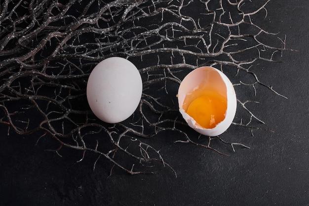 Gema de ovo isolada em um espaço negro no ninho artificial.