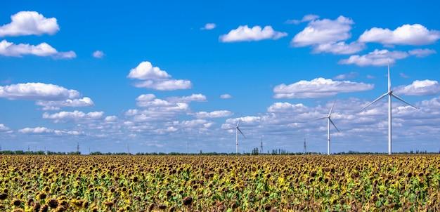 Geradores eólicos em um campo de girassol contra um céu nublado
