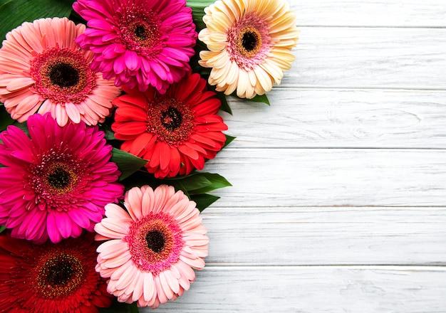 Gerbera brilhante flores sobre fundo branco de madeira