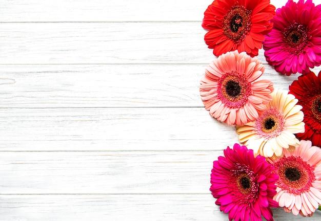 Gerbera brilhante flores sobre fundo de madeira