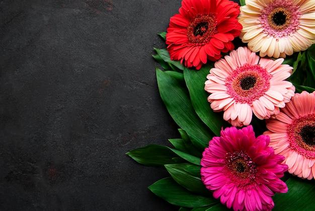 Gerbera brilhante flores sobre fundo preto