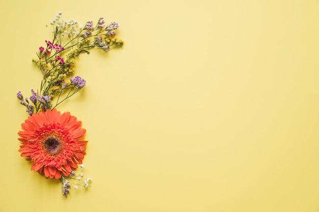 Gerbera e flores silvestres