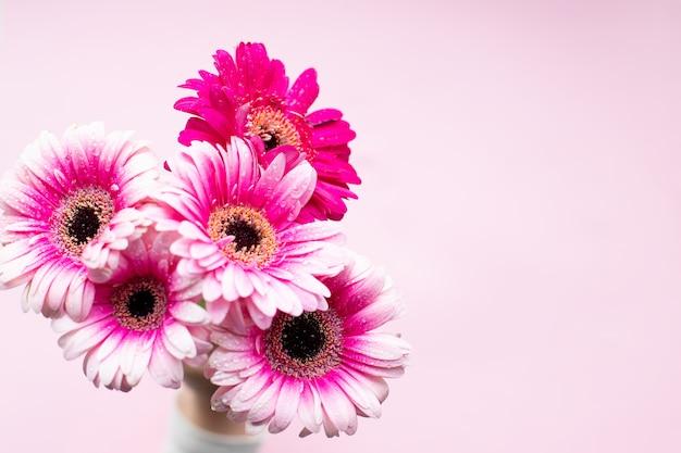 Gerbera rosa flores. feliz dia das mães design. flores frescas naturais. margaridas gerbera rosa. copie o espaço. buquê de flores gerbera linda.