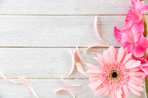 Gerbera rosa gladiolus flor primavera verão e pétala decoram em fundo branco de madeira