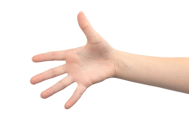 Gesto com a mão palma aberta com cinco dedos, isolado em um fundo branco, close-up de jovem mulher