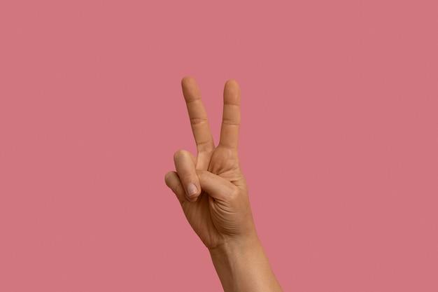 Gesto de linguagem gestual isolado em rosa