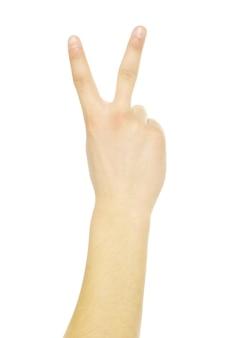Gestos com as mãos isolados em um branco
