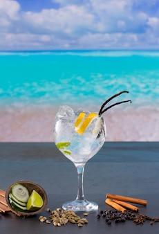 Gin tônica cocktail com especiarias na praia do caribe tropical