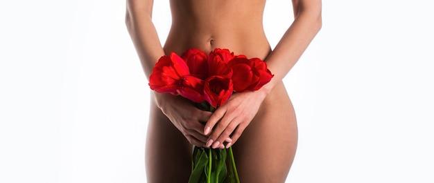 Ginecologia, menstruação, conceito de saúde genital da mulher
