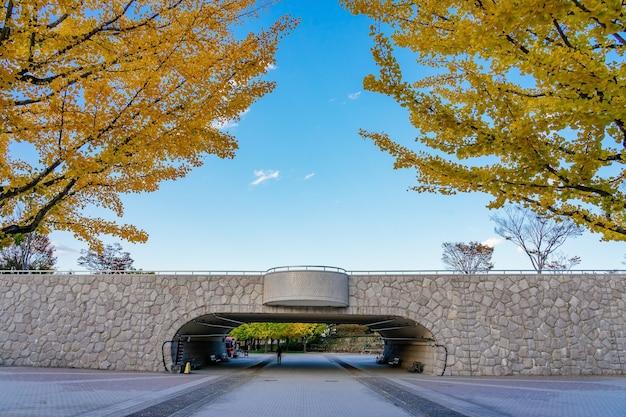 Ginkgo road no bandai azuma sport park fukushima japão
