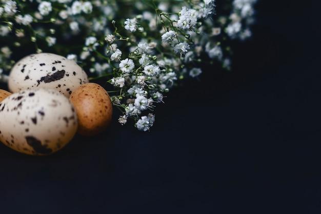 Gipsophila e pequenos ovos no fundo cinza simples