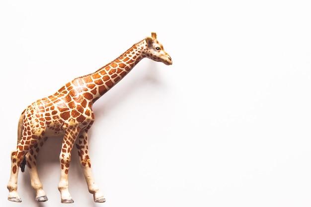 Girafa de brinquedo marrom em fundo branco